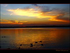 IMG_7988 AD (Podnah 1) Tags: sunset water reflections dusk lakes ducks anawesomeshot