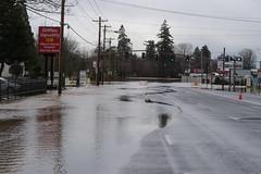 FloodedFoster