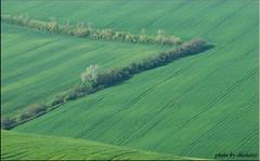 borders (chichetto) Tags: landscapes nikon italia camper legacy marche lemarche panorami d80 bellitalia nikonflickraward chichetto dragondaggerphoto daarklandsgroup yourwonderland magicunicornmasterpiece