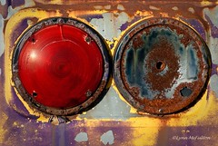 April 24 - Come to a full stop (Lynn McFulton) Tags: auto yellow rust purple pad glorious taillights wreckers project365 mcleans 2010yip