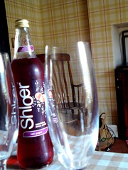 Shloer (vilnix) Tags: york family holiday glass abbey architecture easter walking countryside spring hole drink hiking yorkshire north cottage sunny chapel medieval le monks moors fountains spout hutton fizzy anglesey shloer mallyan