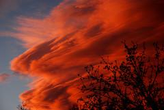 Lenticular Sunset (truan) Tags: sunset red sky cloud lenticular spruce cloudsstormssunsetssunrises