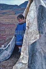 00032546 (wolfgangkaehler) Tags: girls people canada girl children child traditional tent seal inuit northamerica northwestterritories eskimos nunavut eskimo hudsonbay huntingcamp sealskin inuits peopleworldwide inuiteskimos childrenworldwide