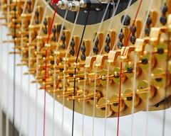 Harp (riverrustic) Tags: macro mcobj