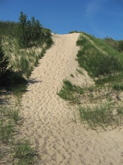 Indiana Dunes (Steve A Johnson) Tags: vacation plants lake beach public water grass sand scenery pretty michigan dune steve johnson scenic environmental indiana hills mature environment species access variety habitat pioneer sustainable wetland ecosystem climax succession dunegrass