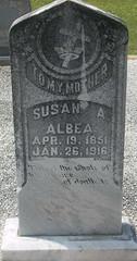 Susan A Pitman Albea