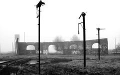 Time changed everything (Don Vacomano) Tags: winter fog trenes invierno niebla valdivia