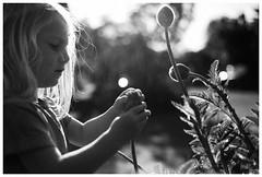 0510_SELLWOOD_M9_004 (darin moran) Tags: bw kids oregon portland yang pdx sellwood blackwhitephotos leicam9