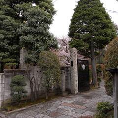 Hōshō-ji Temple 01