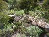 Montée au col 750m : les restes erratiques du sentier traditionnel