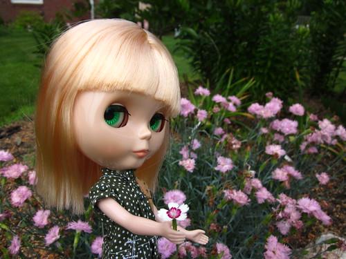 Flower garden.