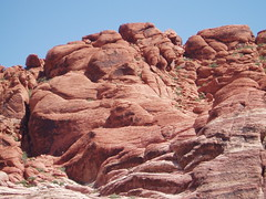 013 Red Rock Canyon