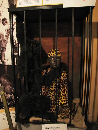 Boy in monkey cage