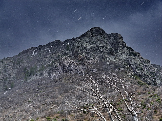 Snow hits Browns Peak - Four Peaks Wilderness by Al_HikesAZ
