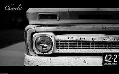 155/365 - Chevrolet