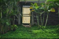Door at garden (KC Toh) Tags: door garden tropical 树 门 d90 绿色 花园 青草