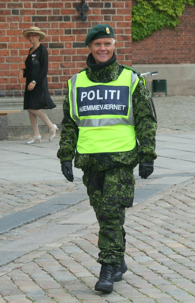 The Danish Home Guard