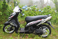 Vario parking (Arne Kuilman) Tags: flowers forest parking scooter hills automatic parked hortensias 110cc tamblingan hondavario