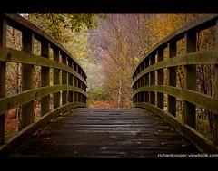Autumn (*Richard Cooper *) Tags: bridge autumn trees fall snowdonia