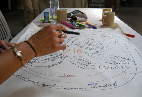 Intro to Permaculture course structure
