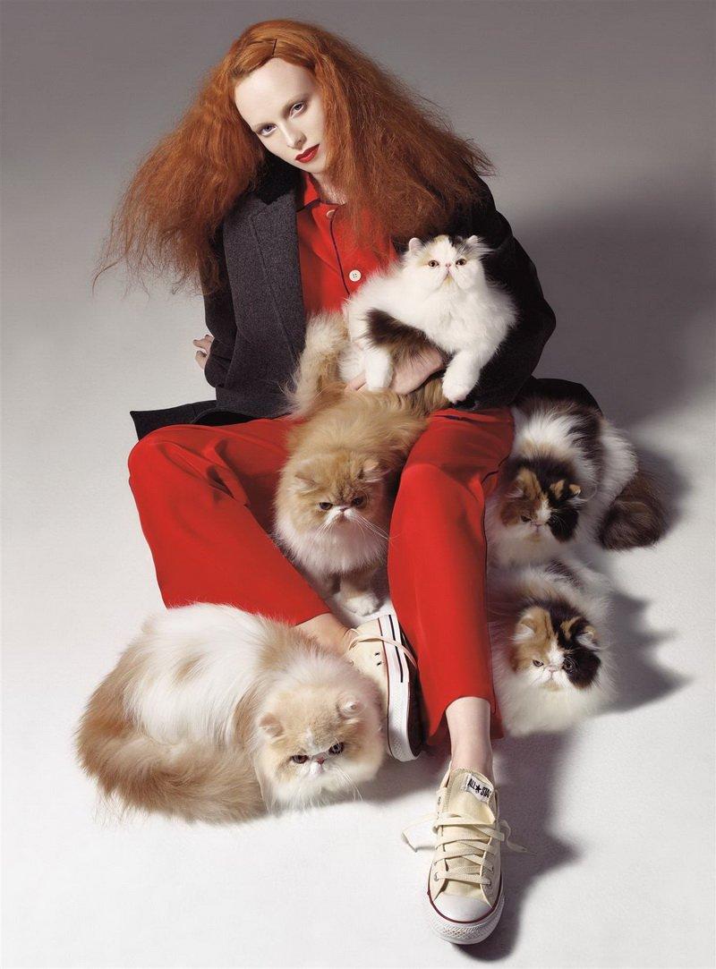 kitty_fashion_belljar