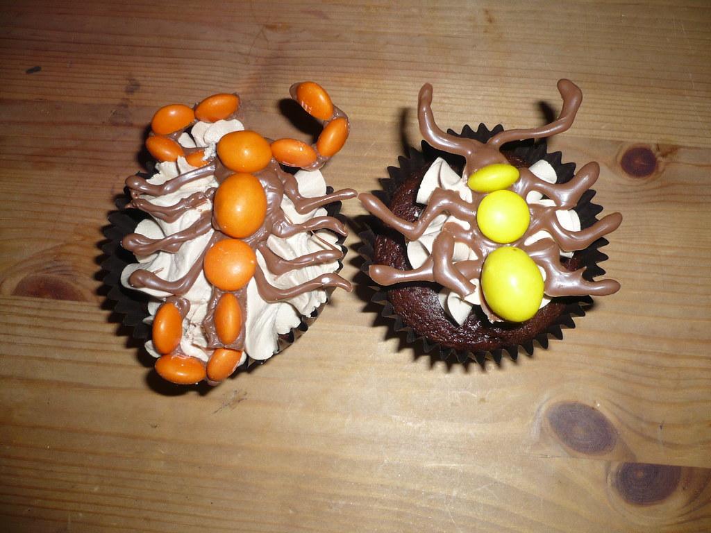 Creepy crawly cupcakes, plus owls and Oreo cupcakes