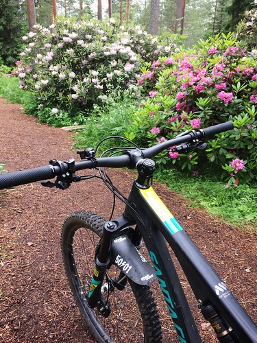 Rhododendron Park 1