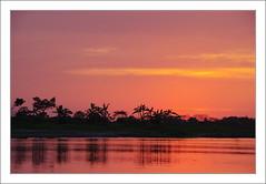 Coucher de soleil sur le Rio Magdalena (PtiteArvine) Tags: riomagadalena rio fleuve river coucherdesoleil mompox colombie sunset