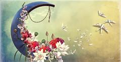 Blue Moon (Jewel Appletor aka Karalyn Hubbard) Tags: moon bluemoon flowers floraldesign lotus freesia birds illustration inspiration whimsical art artist artwork digitalart photo photography photograph pixlperfectphotography petals lights
