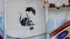 Banksy Rat ouside Dangerfield, Prahran (cgs327) Tags: stencil alley rat banksy melbourne lane laneway dangerfield prahran