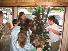 4-H Twinkle Tree (SLChannell) Tags: tree twinkle