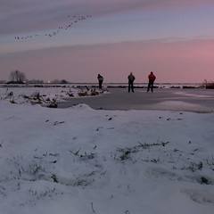 Waterland Winter Wonderland (Bn) Tags: holland topf50 thenetherlands wintertime waterland tms schaats holysloot elfstedentocht vformation tellmeastory greylaggeese ransdorp 50faves natuurijs elevencitiestour abigfave bevrorenmeer ransdorperdie skatingonnaturalice dutchskaters schaatseninwaterland vformatie skateoutdoor ganzentijdinjanuari schaatsgekte ijstochten lakefreezeover nearbyamsterdam dutchenjoywinter enjoyingiceskating prayingforice extremevorstverwacht winterinwaterland geesemovingsouthorwestinwinter 19december2009 waterlandwinterwonderland firstdayofnaturalice