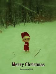 Merry Christmas for everybody !!!