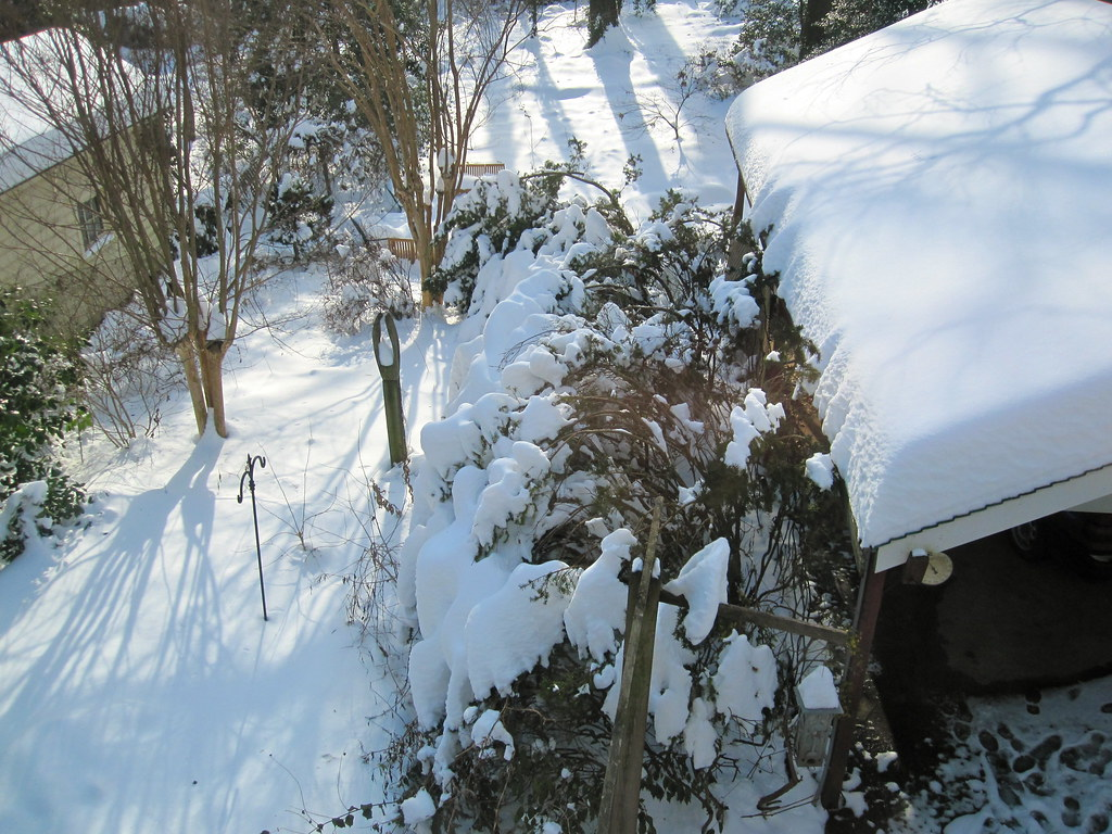 the world u0027s best photos of carport and snow flickr hive mind