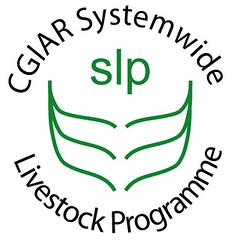 SLP news