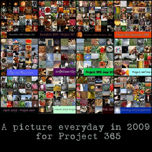 Project 365 Mosaic