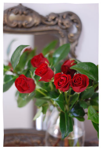 red_roses01