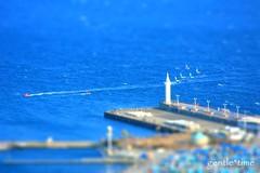 Wind blowing through the Pier (poohharapeko) Tags: blue sea japan pier wind shift tilt osa