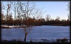 Coucher de soleil sur l'tang gel (bewo22) Tags: ice sunrise coucherdesoleil glace etang