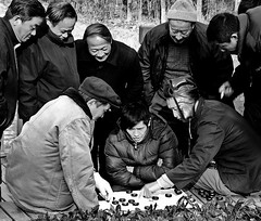 Chinese Chess (Frank Wuestefeld) Tags: park trip travel vacation portrait people white holiday black game asian fun asia shanghai expo urlaub chinese chess lena creativecommons pearl   pudong bund schwarz hongkou weis heping chinaseries frankwuestefeld blackwhiteserieschina