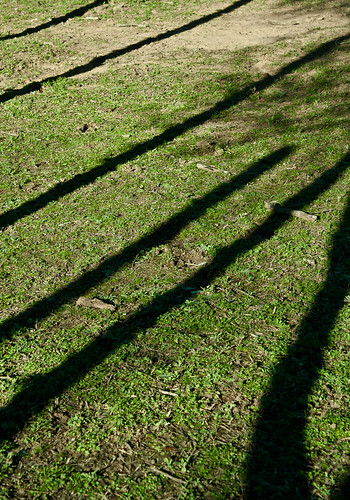 Long Shadow - 229/365 - 24 January 2010