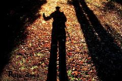 silhouette c (pollyahern) Tags: polly ahern
