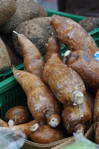 Yucca/Cassava/Manioc