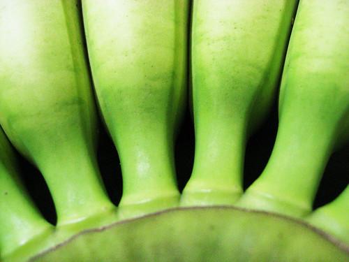 Green Banana Patterns
