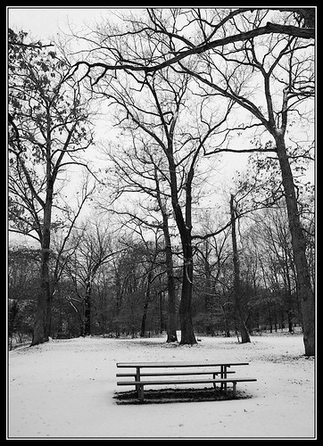 Snow bench ilford bw (by Silver Image)