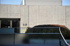 Tokyo 2009 - 表参道 - Omote Santo Hill (3)