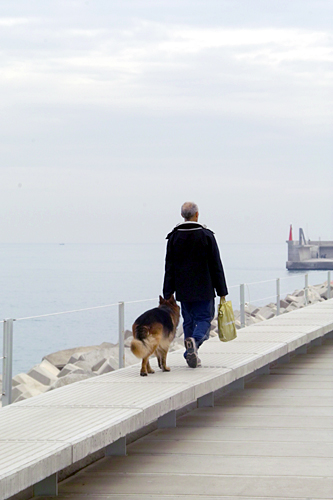dog-walking-valencia