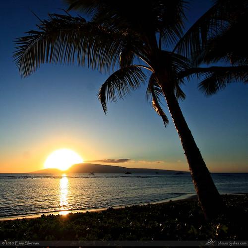 Maui by Elisa Sherman | photosbyelisa.com