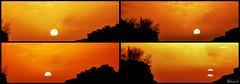 Sun In Persepolis (Behzad No) Tags: red sky sun persian iran shiraz persepolis parseh nikond90