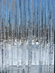Iciclepocolypse! (godpasta) Tags: winter cold ice icicles